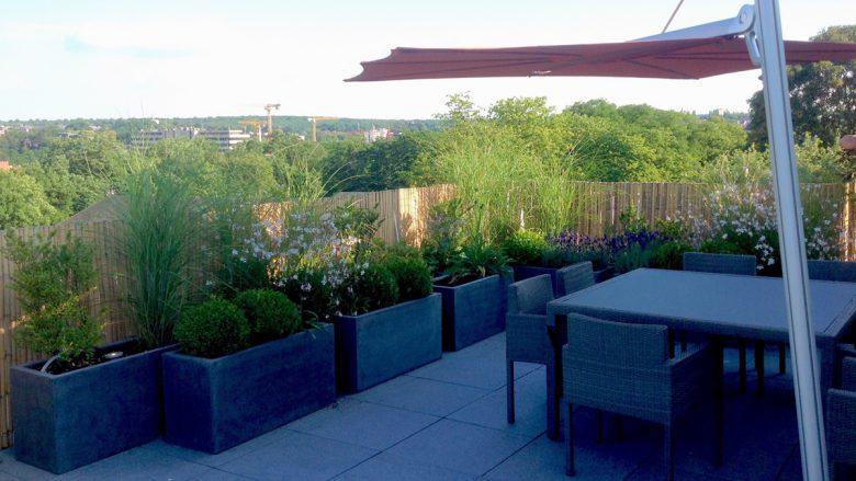 «Je veux un jardin sur le toit»